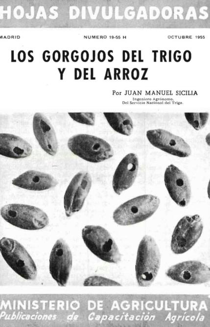LOS GORGOJOS DEL TRIGO Y DEL ARROZ